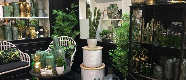 Décoration exotique tropique verte