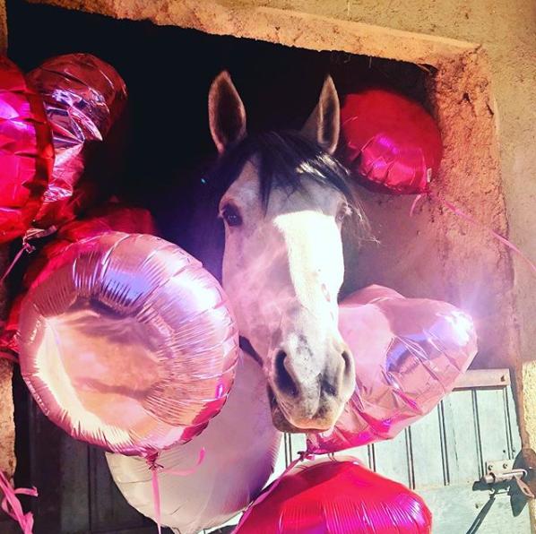 ballon hélium anniversaire - témoignage client
