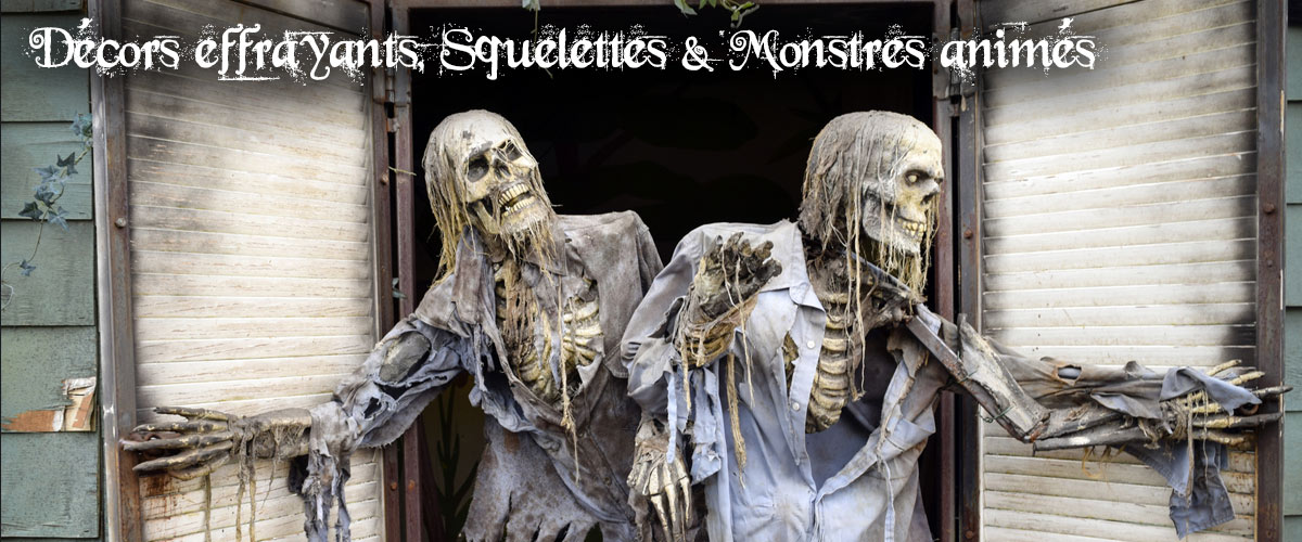 décoration halloween squelette toile araignée